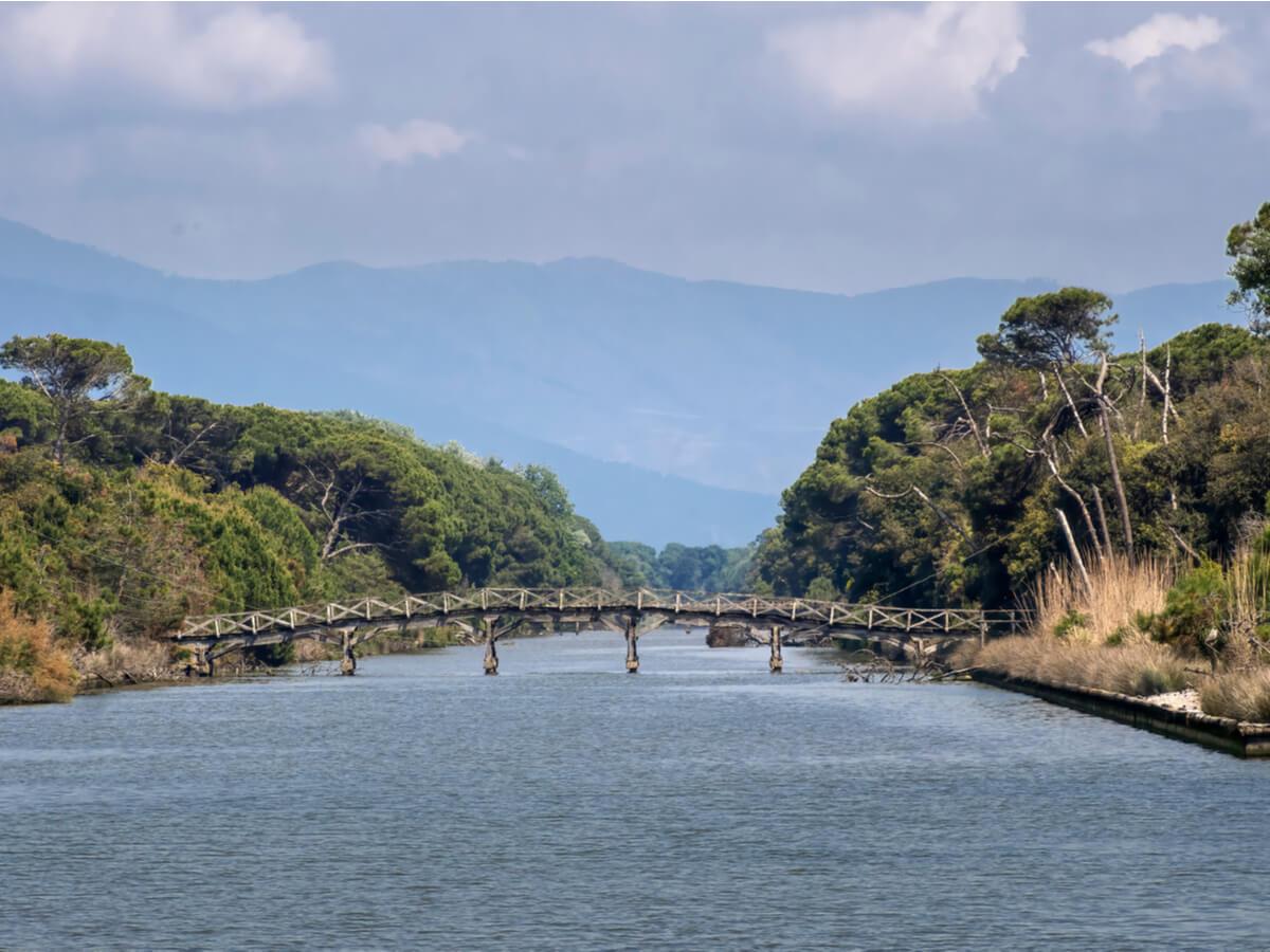 Puente flotante en el parque natural Migliarino, en Italia.