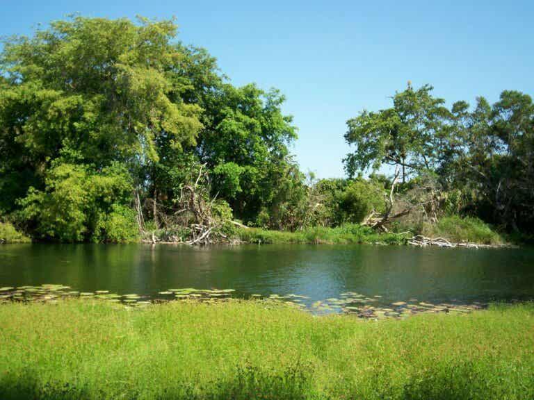 Ich Ha Lol Xaan: un hermoso paraíso en Yucatán