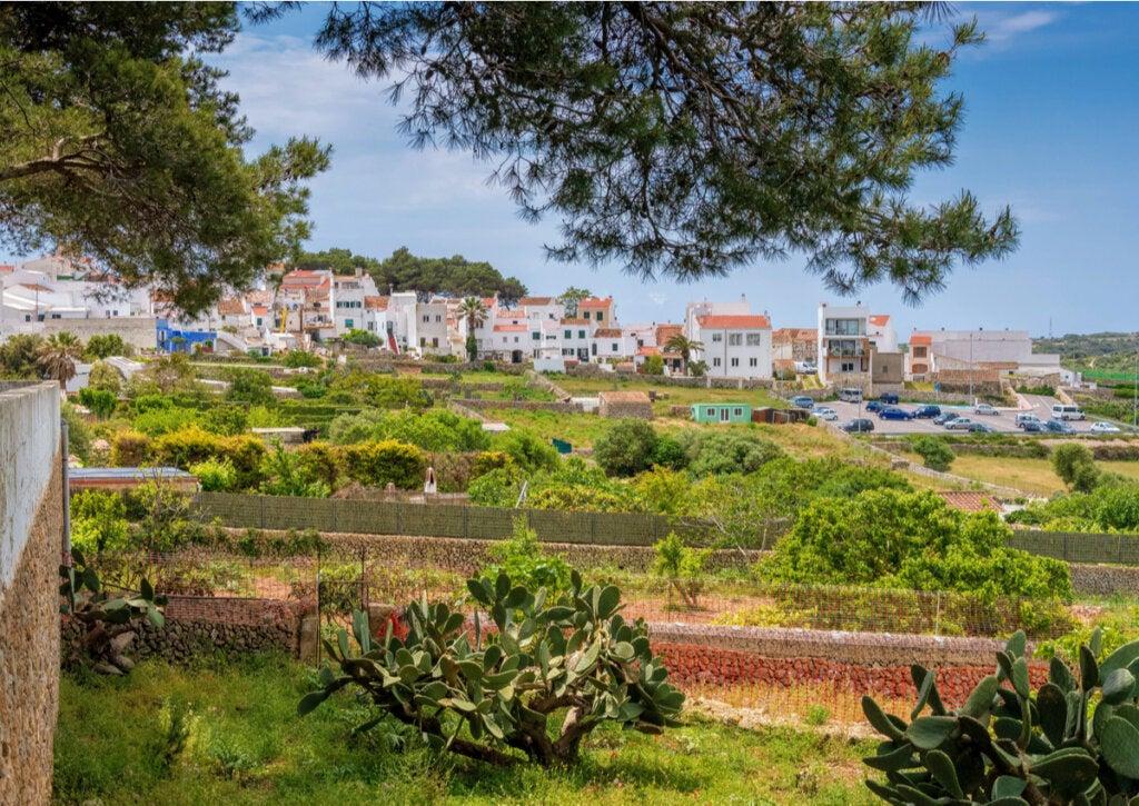 Alaior, la ciudad universitaria de Menorca