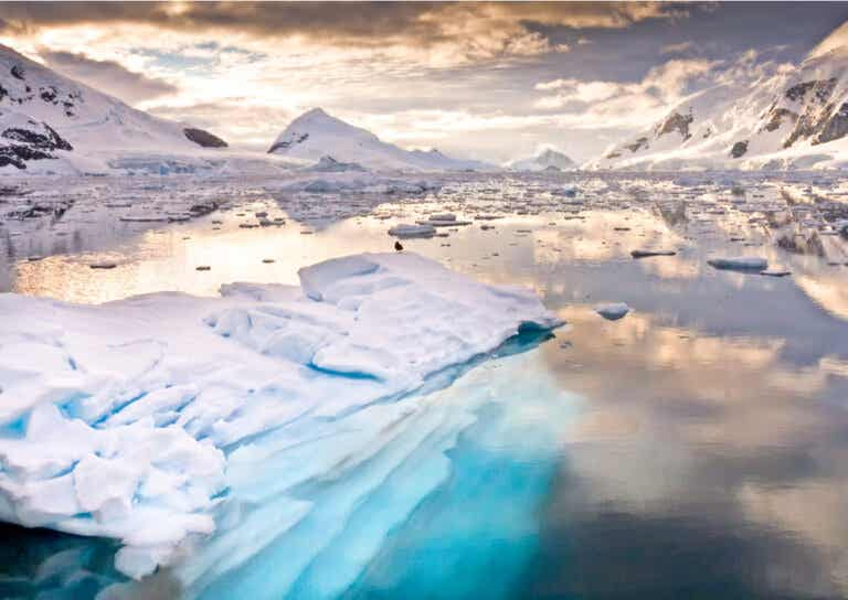 7 datos fantásticos sobre la Antártida
