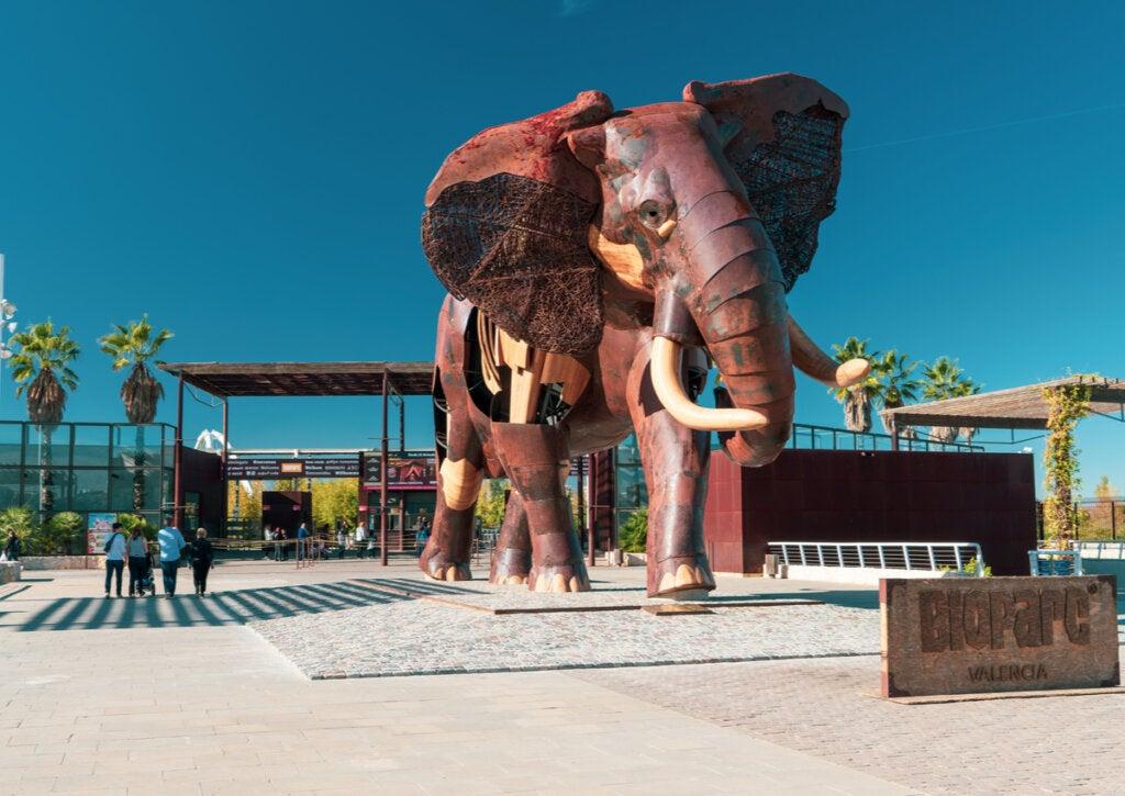 Descubre el Bioparc de Valencia