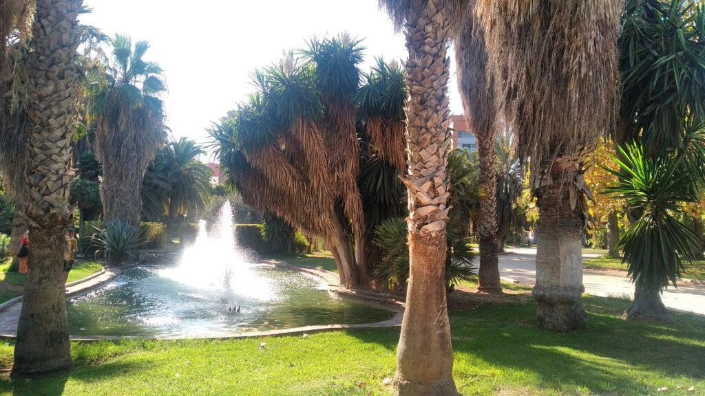 El Jardín del Turia en Valencia posee diseños hermosos y naturales.