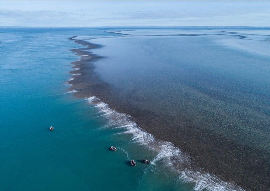El Montgomery Reef, un sitio maravilloso en Kimberley.