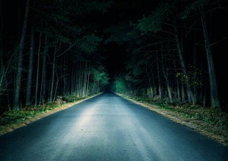 Camino oscuro y terrorífico durante la noche.