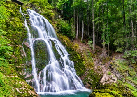 Las cascadas Giessbach se ubican en Iseltwald, Suiza.