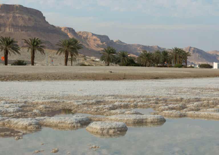 ¿Cómo se forman las islas de sal en el mar Muerto?