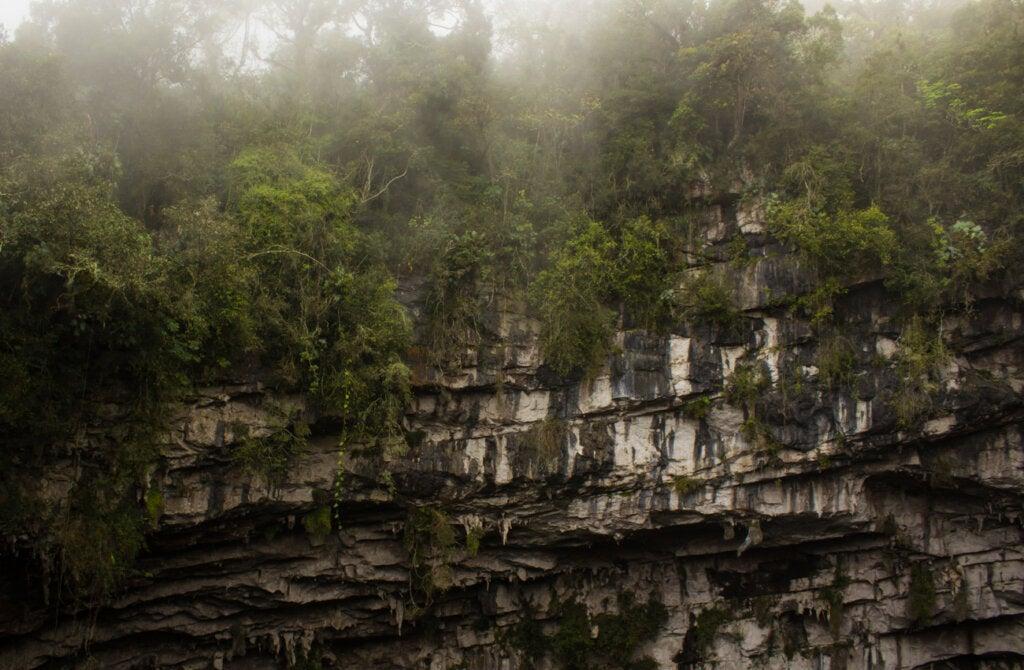 Las rocas ofrecen un bello paisaje en este lugar de México.