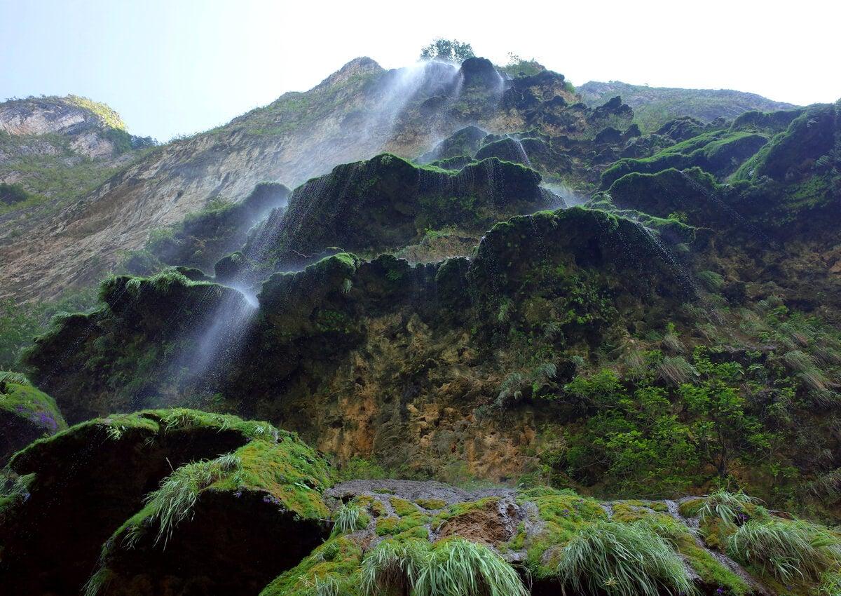 El espectacular Árbol de Navidad es una de las curiosidades del Cañón del Sumidero.