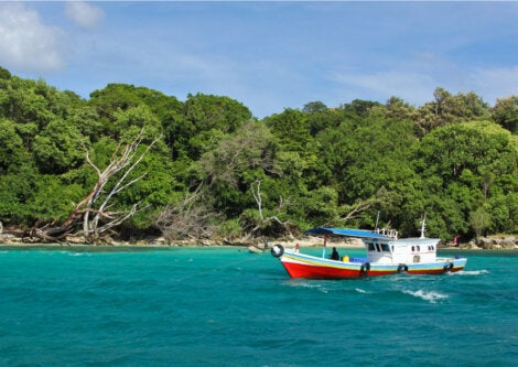 El Parque Nacional Ujung Kulon promueve el turismo sostenible.