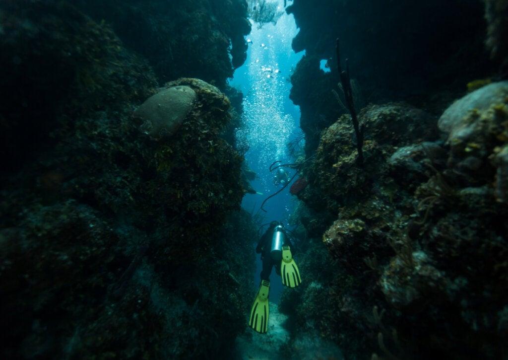 Experto buceando en el gran agujero azul de Belice.