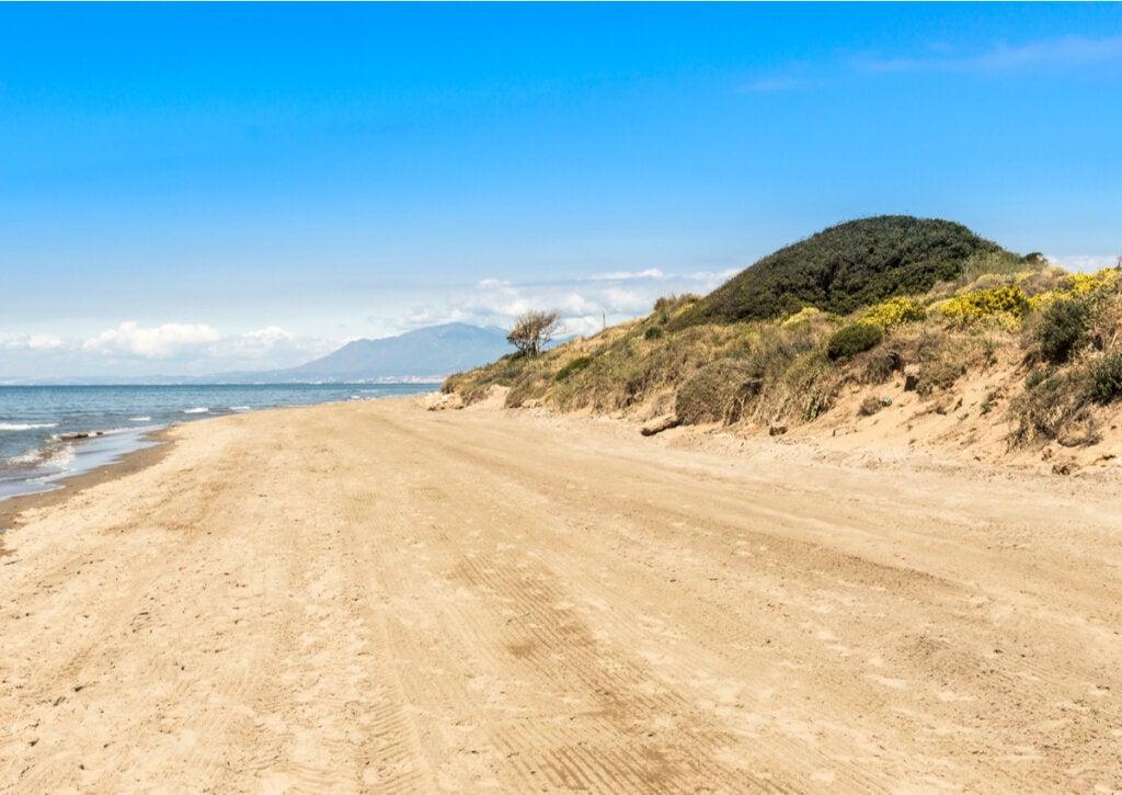 Las dunas de Artola son un símbolo de Marbella.