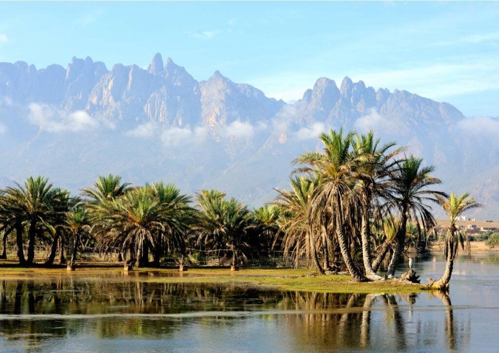 Socotra, una de las islas más desconocidas
