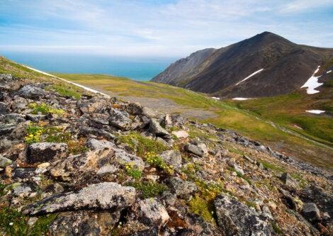 Paisaje en la costa oriental de Rusia, en dirección a las islas Diómedes.