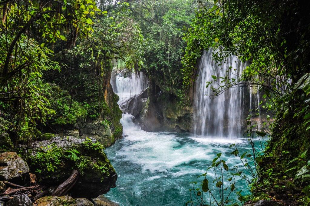 Puente de Dios en México: todo lo que debes saber