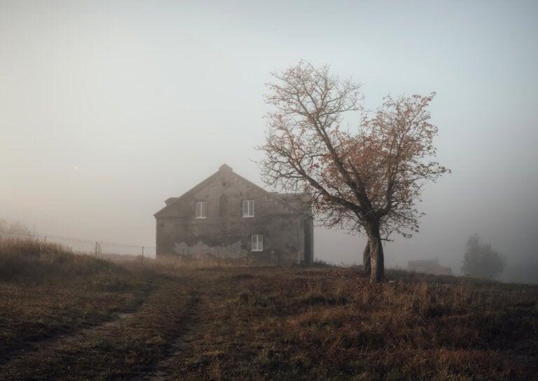 La ciudad de Spectre: ¿por qué fue abandonada?