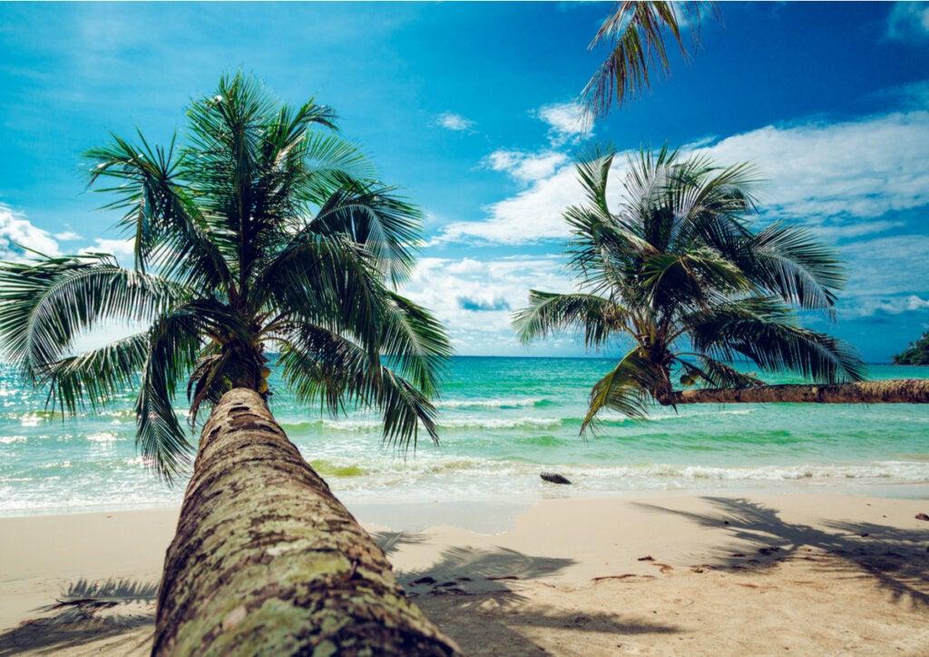 Playa de Koh Kood en Tailandia, otro gran destino para el otoño.