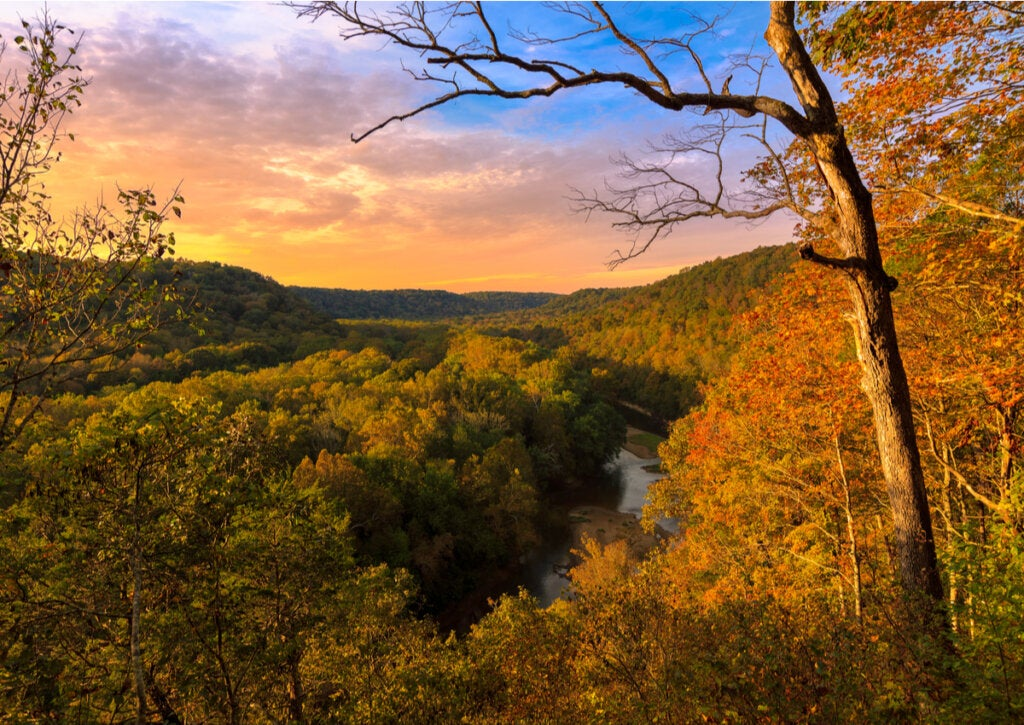 El río Green se encuentra dentro del Parque Nacional de Mammoth Cave.