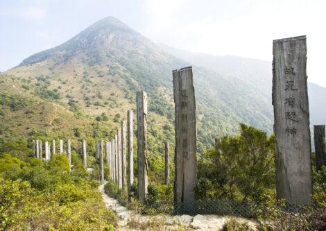El camino de la sabiduría en Ngong Ping está entre los lugares más visitados.