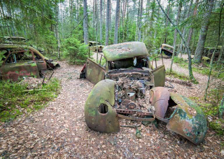 Cementerio de coches de Kyrkö: ¿por qué fueron abandonados allí?