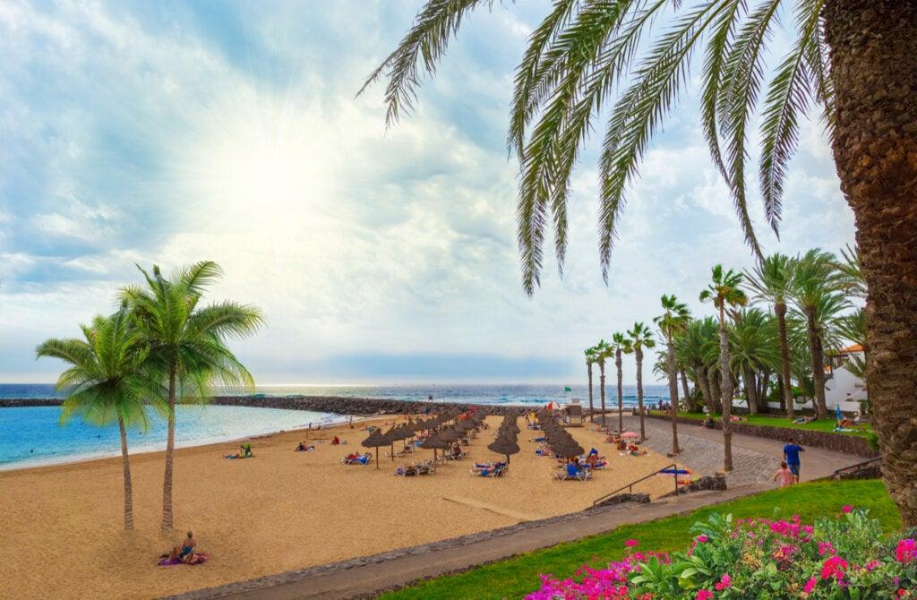 Gracias a su clima, Tenerife es también uno de los mejores lugares para visitar en invierno.