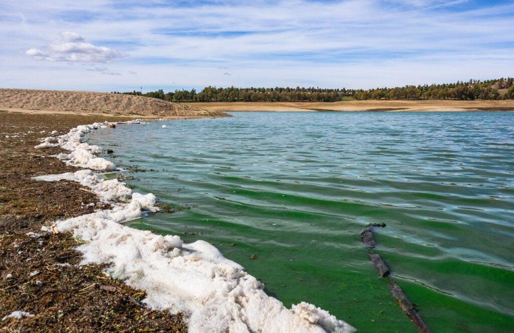 Contaminación visible en la costa de la isla de Valdecañas.