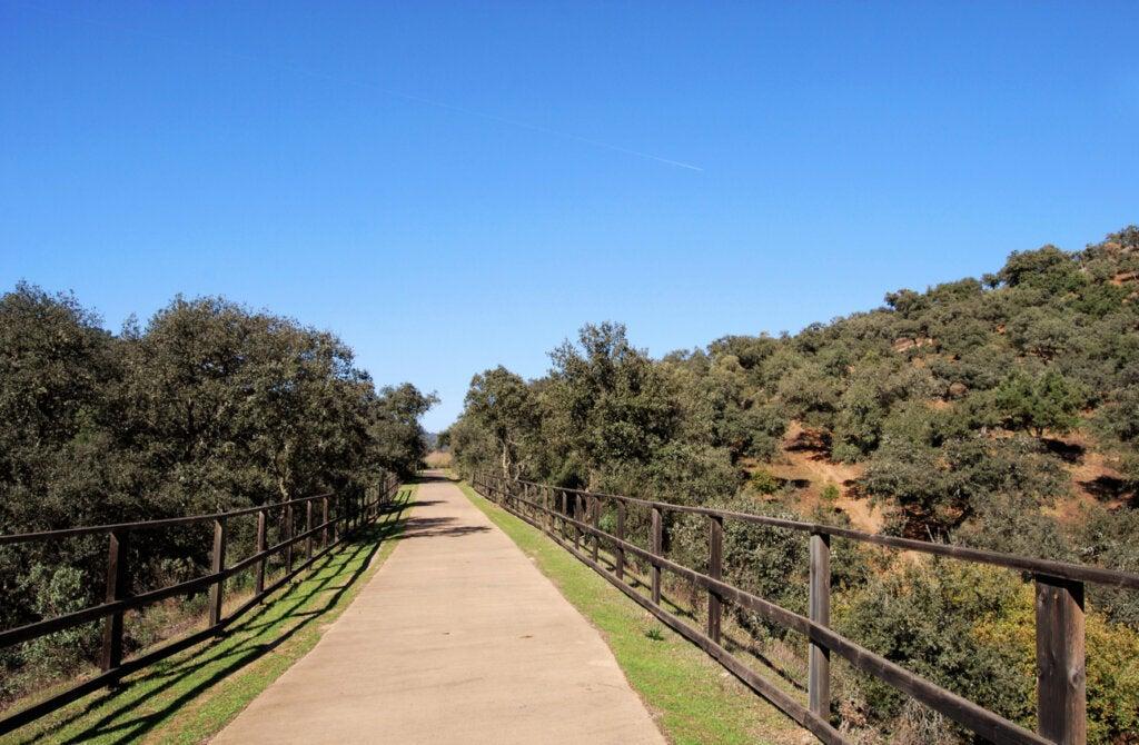 El Parque Natural Sierra Norte destaca por su flora y fauna.
