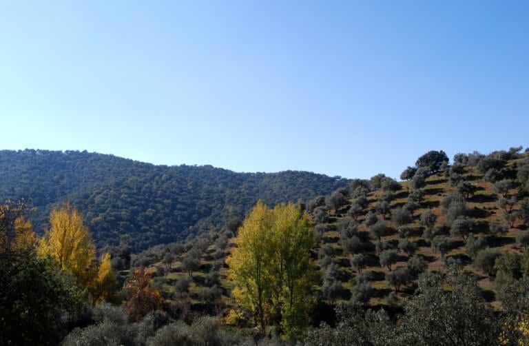 Sierra Norte de Sevilla, corazón de Sierra Morena