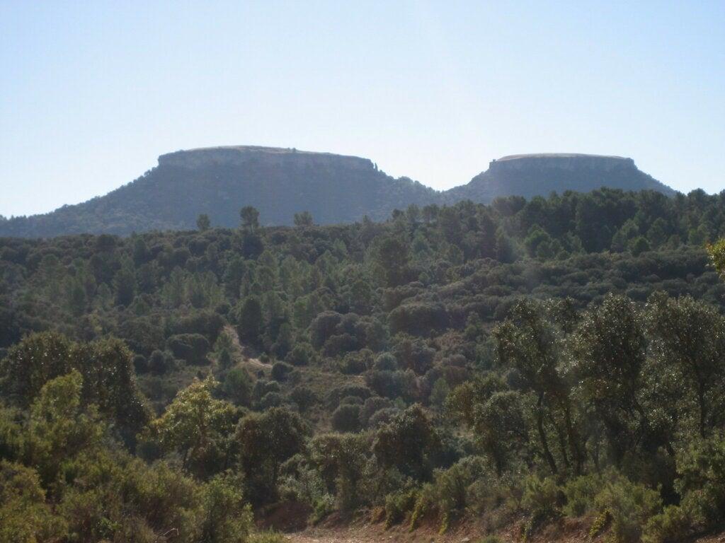 Las Tetas de Viana, los cerros gemelos de La Alcarria