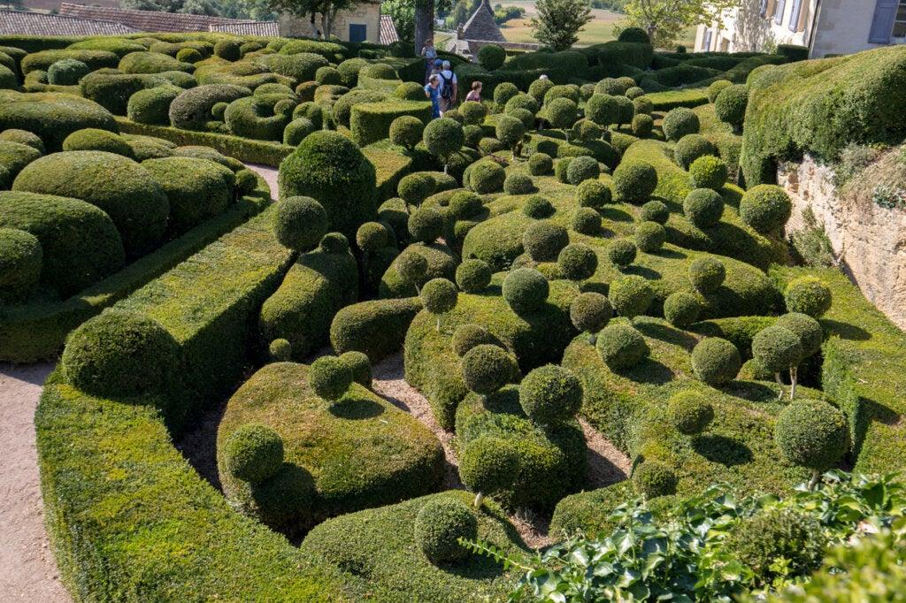 Topario ubicado en plenos jardines de Marqueyssac.