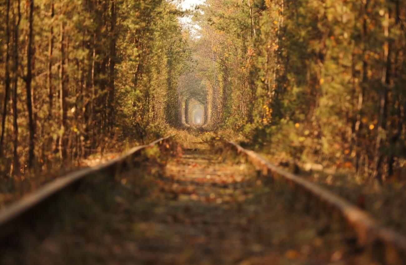 El túnel del amor en Klevan cambia de color según la estación.