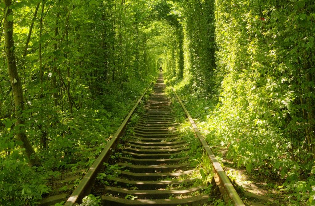 El túnel del amor en Klevan tiene una historia muy curiosa de fondo.