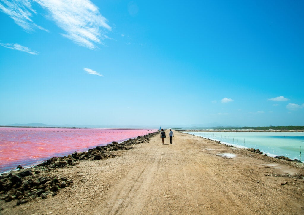 Mar rosado, una joya en Galerazamba