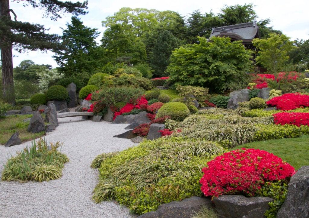 5 curiosidades del oasis botánico de Londres