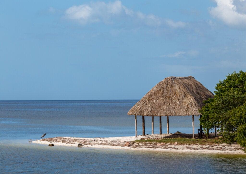 Las playas de Campeche en México son un verdadero paraíso natural.