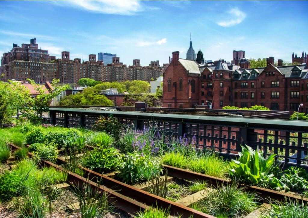 El recorrido histórico de High Line fue conservado al construir el parque.