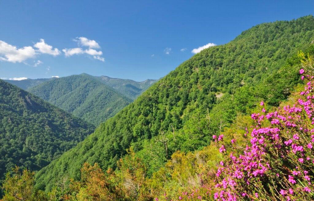 Los 6 parques naturales de España que debes visitar