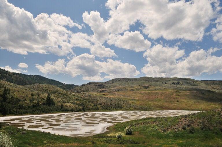Lago manchado en Columbia Británica, un mosaico natural