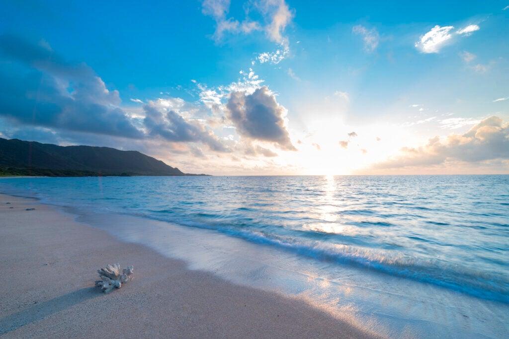 Hay teorías que afirman que el continente de Mu está sumergido en el océano Pacífico.