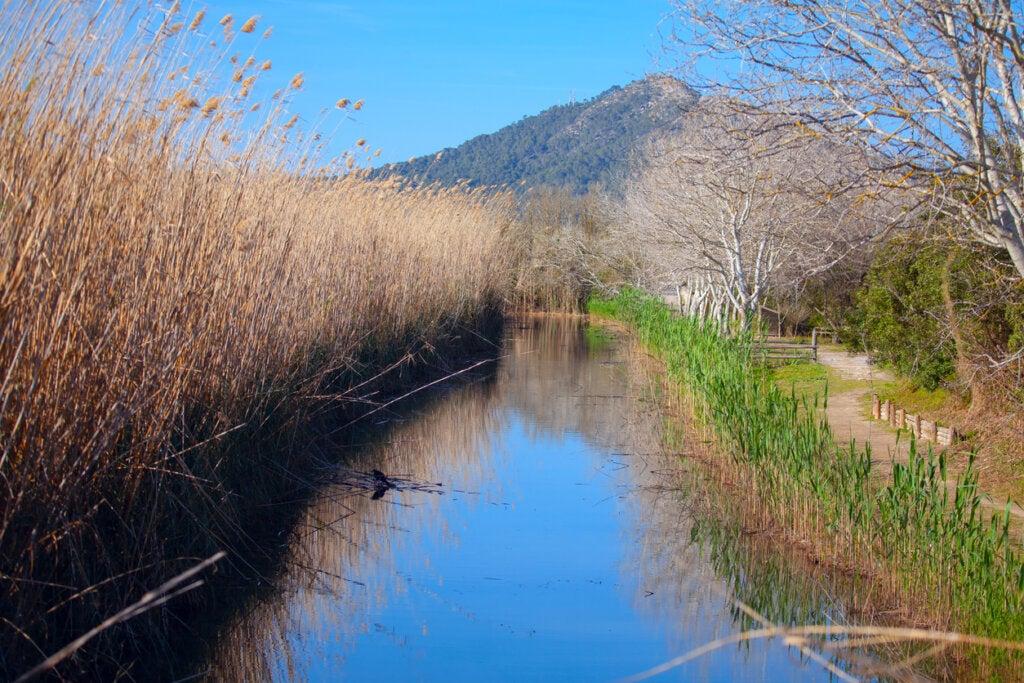 El de S'albufera es uno de los mejores parques naturales para conocer en España.