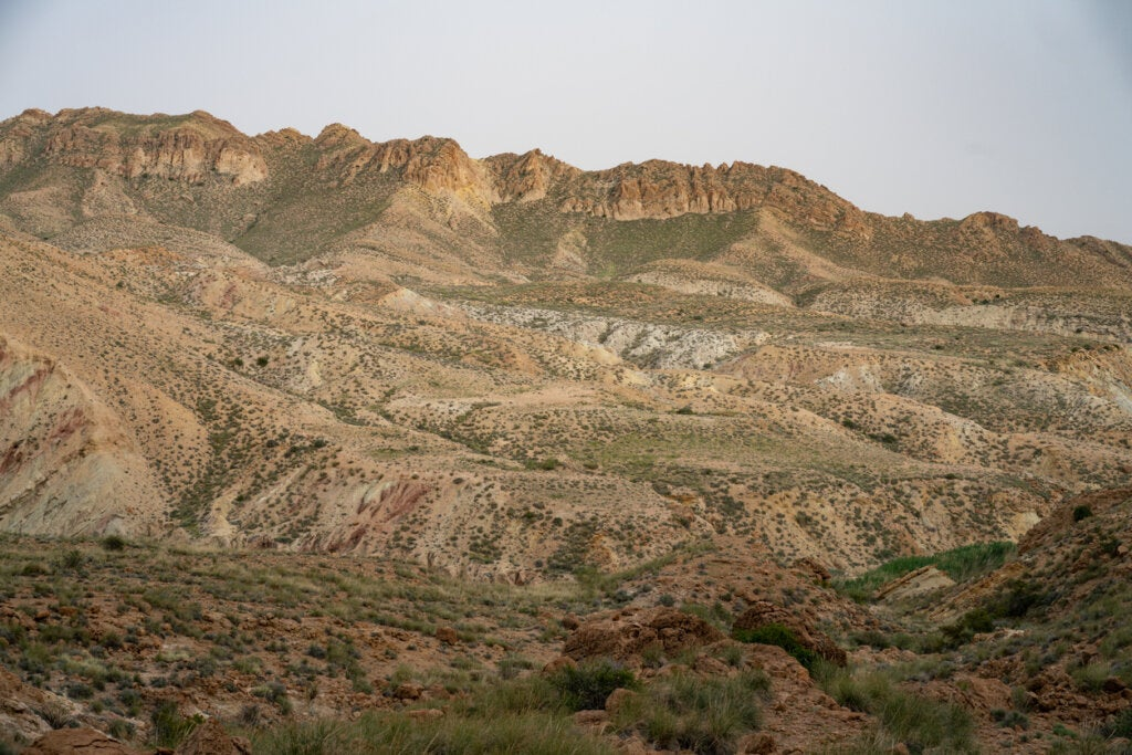 Parque Nacional Bou-Hedma, cercano a la zona donde se formó el lago de Gafsa.