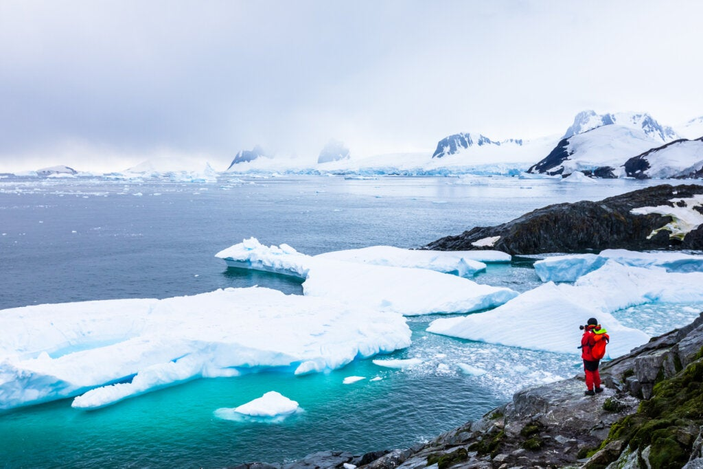 6 curiosidades sobre la Antártida