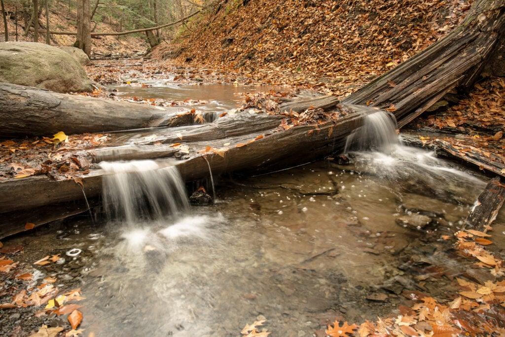 La cascada de la llama eterna se encuentra en el Chestnut Ridge Park.