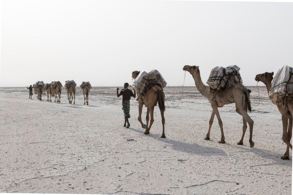 El pueblo Afar vive en esta región inhóspita del Cuerno de África.