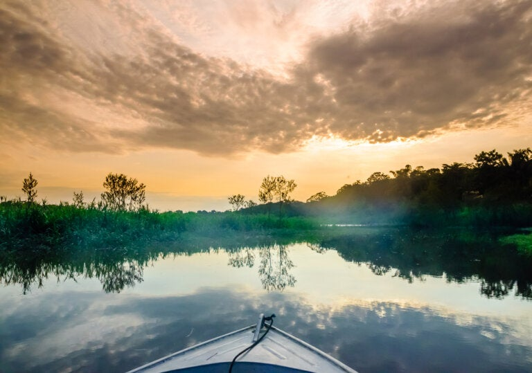 El río hirviente del Amazonas: todo lo que debes saber